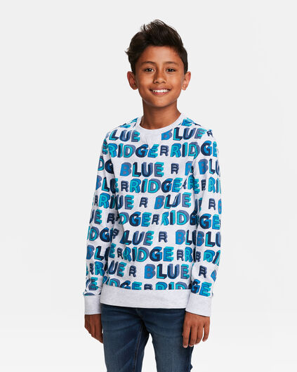 SWEAT-SHIRT BLUE RIDGE LOGO PRINT GARÇON Gris clair mêlé