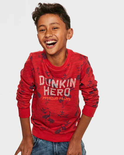 SWEATER HERO PRINTED GARÇON Rouge